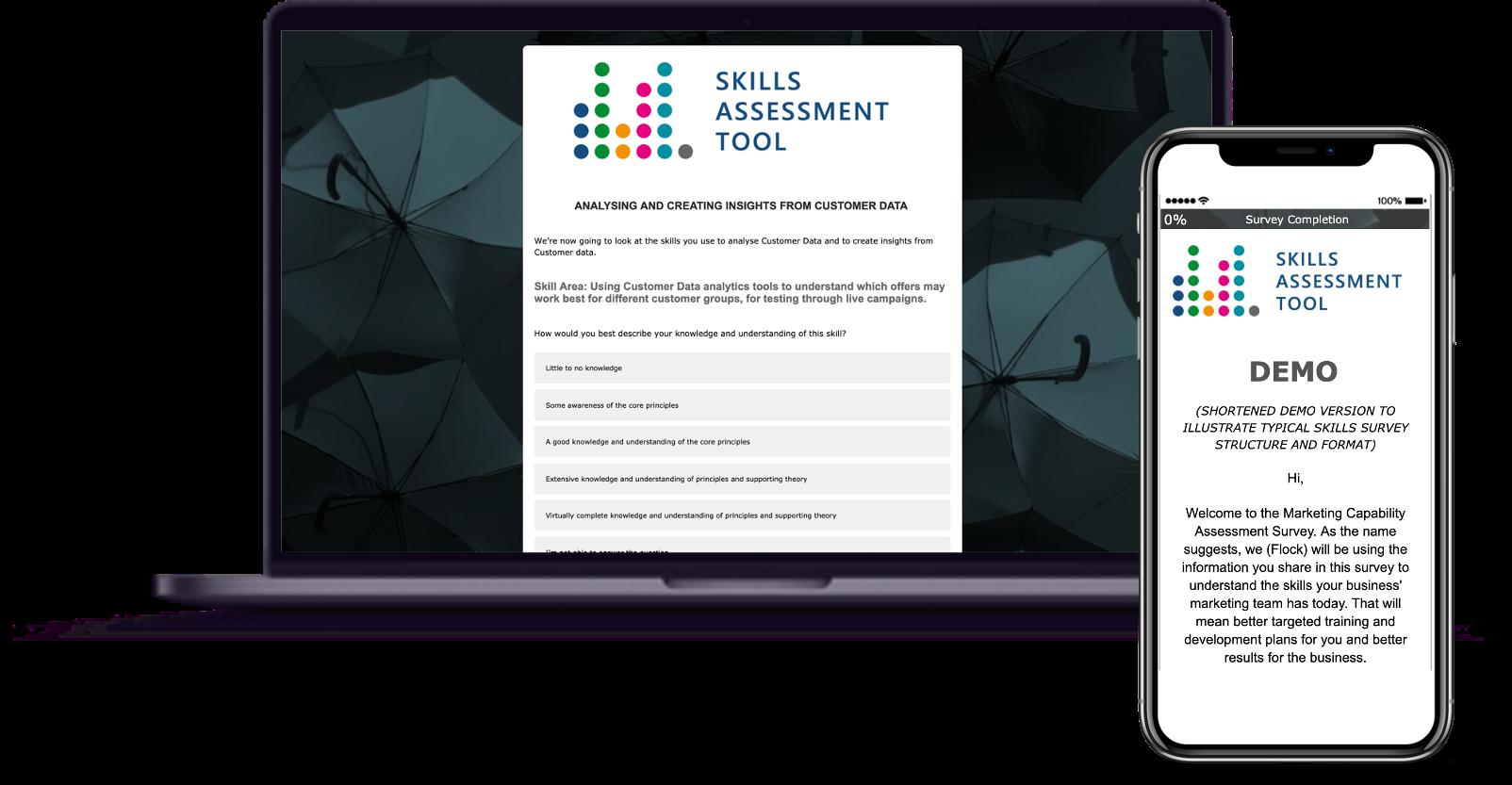 skills assessment tool png
